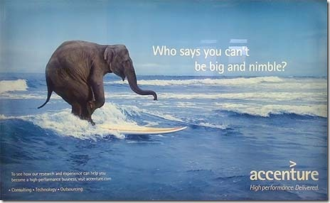 Accenture-Elephant-Surfing-DFW-Billboard