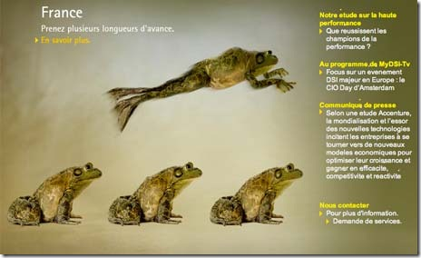 Accenture-Post-Tiger-France-Frogs