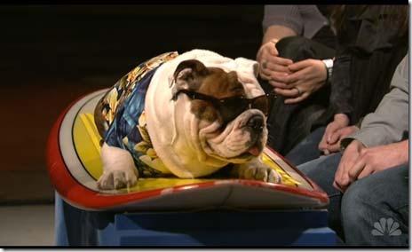 SNL-ashton-kutcher-dog-on-surfboard