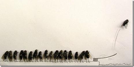 dead-fly-art-13